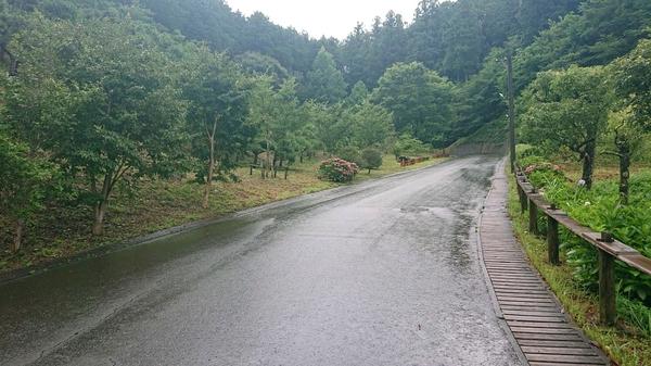 坂道2.jpg