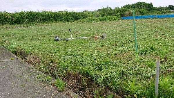 畑の草刈り完了.jpg
