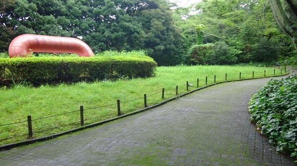 緑の道1.JPG