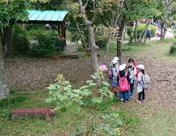 園内の小学生 完成版.jpg