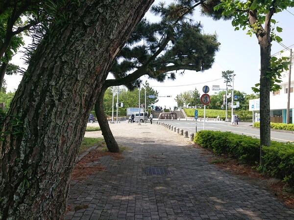 中田島砂丘入口.jpg