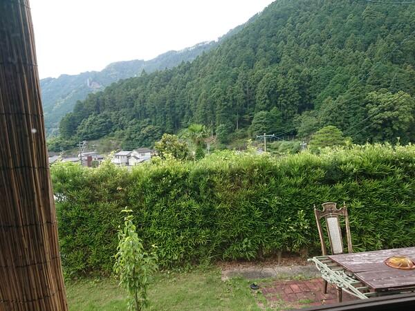 窓から天竜 緑.jpg