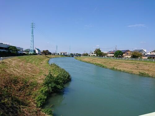 馬込川の堤防.jpg